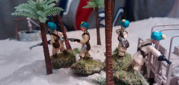 Der indische Offizier steht im 4er-Trupp im Wald.