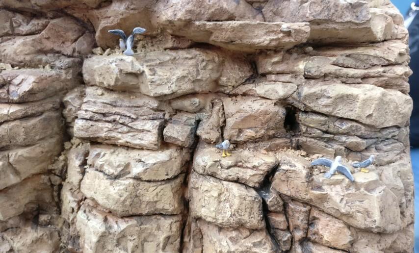 In den Felsen unterhalb der Geschützbatterie Ikizaz-29 brüten Seevögel.