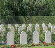 Schlacht am Grebbeberg: Niederlande @ 1940 #5