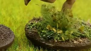 """Wir haben auf den folgenden Bilder die auf diesem Foto von Doncolor ins Grasbüschel gesetzte """"Viet-Cong-Kröte"""" versteckt. Wer findet sie?"""