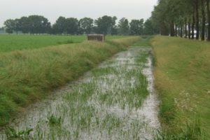Eine niederländische MG-Kasematte S3 Stekelvarken / Spinnekopp am Damm eines Kanals.