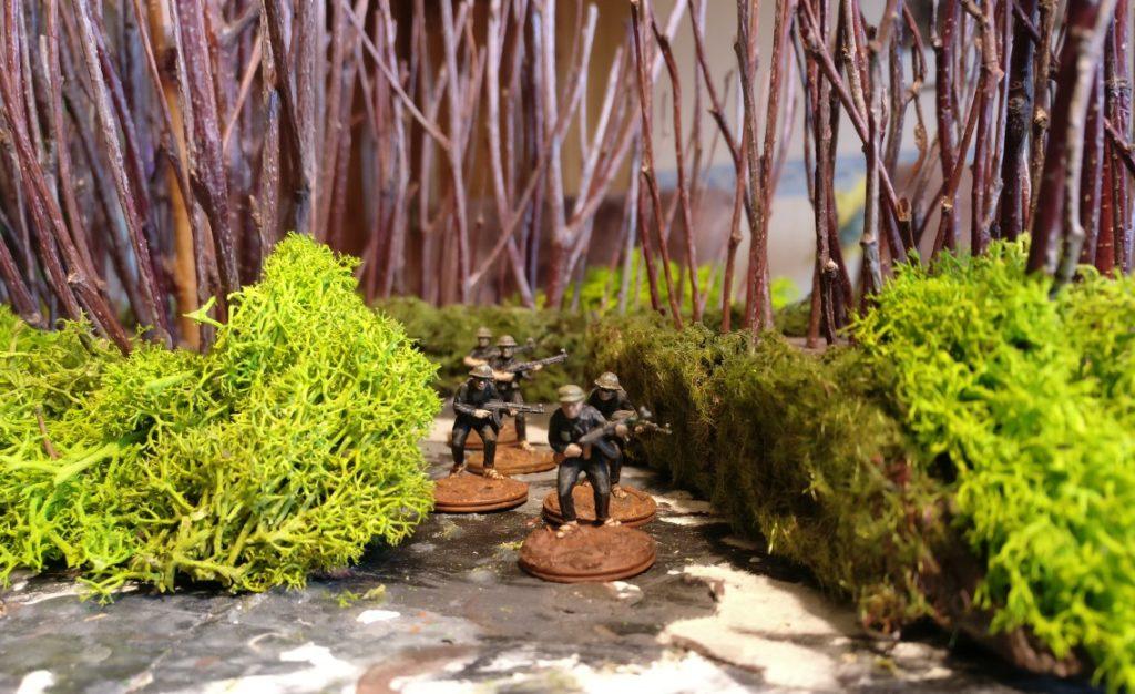 Eine erste Begehung durch den Vietcong ergab klare Ambush-Tauglichkeit der Strauchschicht.