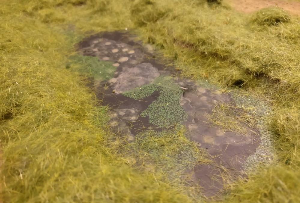Die üppige Variante hat auch ihren Reiz. Vor allem auch die Böschung des versumpften Sees ist hier dicht mit Gras bewachsen.