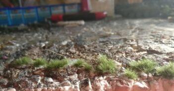 Da wächst Gras auf der Bastelunterlage