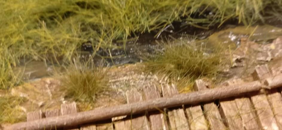 An der gegenüberliegenden Seite des Knüppeldamms stehen weitere Swamp Tuft Grasbüschel.