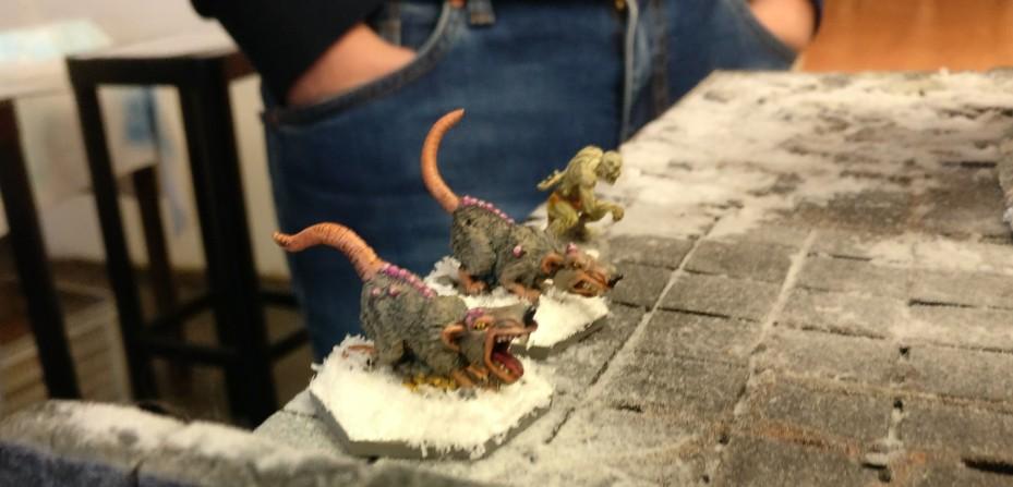 Diese beiden Ratten kamen beim letzten aufgenommenen Schatzmarker ins Spiel. Auch sie machen sich auf die 12-Zoll-Suche nach Fressbarem. Frostgrave auf dem Tag der offenen Tür des Civitas Mattiacorum in Wiesbaden.