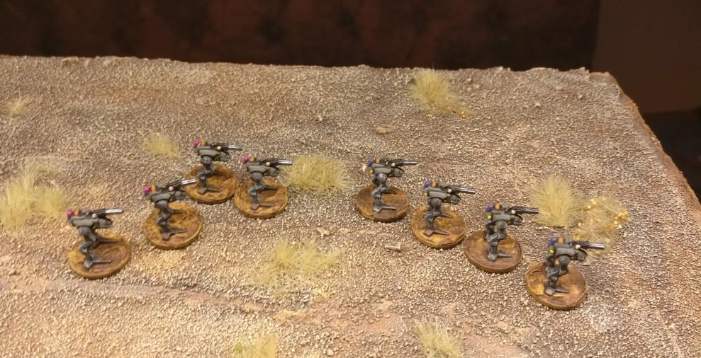 Die Kampfpioniere des Panzer-Pionier-Bataillon 13 haben hier zwei Züge Kampfkrähen übers Feld gehetzt.