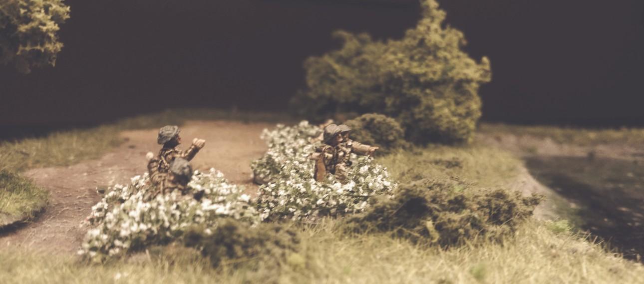 Die Beobachter im weißen Blütenmeer.