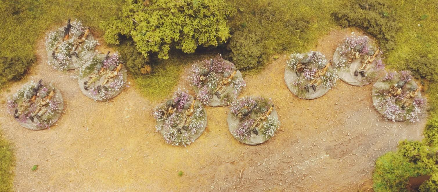 Die PBI-LMG-Foot-Groups im weiß-lila Blütenmeer.