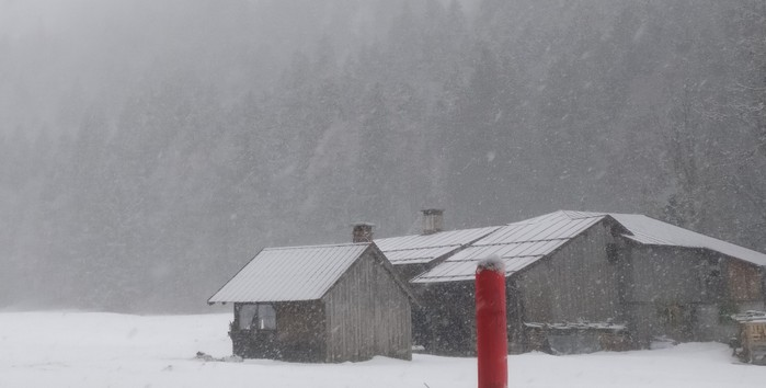 Dichtes Schneetreiben im Trettachtal. Weit und breit ist kein Touri zu sehen. Da kann man die Natur pur genießen.