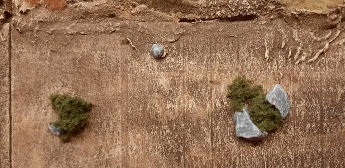 Zwischen den Felsbrocken wächstes sich am besten...