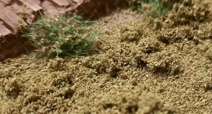 """Nahaufnahme des JAVIS Countryside Scenics """"No. 1 light green course grass"""". Es wird  nur ein dünnes Pulver zurückbleiben. Das meiste Material wird nach dem Trocknen wieder weggenommen."""