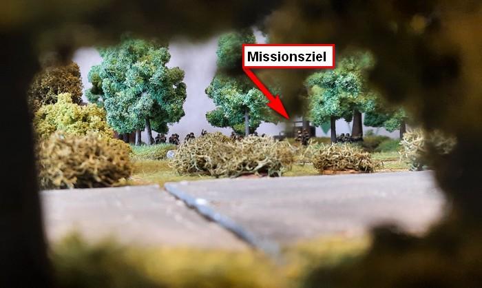 Auch im Wald kann man Bewegung erkennen.